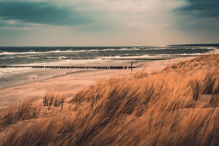 Coastline Mecklenburg Vorpommern